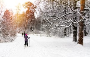 cross-country skiing in forest