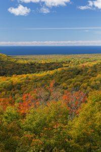 Plan Ahead for the Fall Foliage in Duluth 1