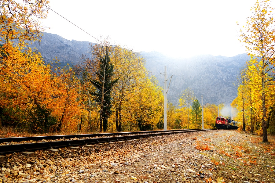 3 Reasons to ride the North Shore Scenic Railroad this fall
